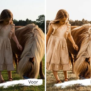 Lightroom Boho Memories preset