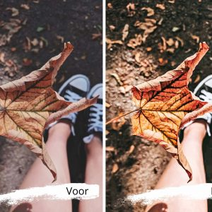 mooie herfstfoto's maken dankzij jouw smartphone presets