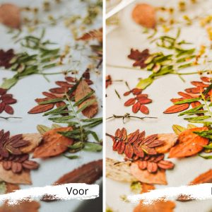 de herfst is in het land dankzij digitale fotofilters